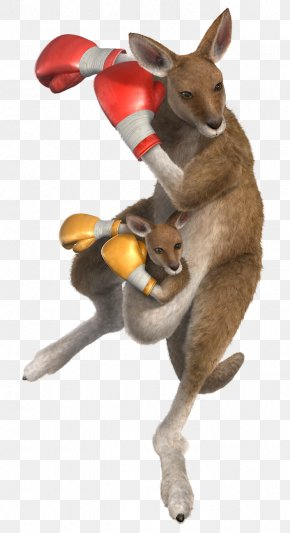 Kangaroo - Tekken 6 Tekken 5: Dark Resurrection Tekken Tag Tournament 2 PNG