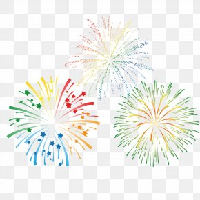 Color Fireworks - Fireworks Royalty-free Euclidean Vector Clip Art PNG