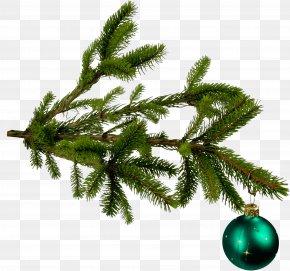 Christmas Tree Branches - Bronner's Christmas Wonderland Christmas Tree Christmas Ornament PNG