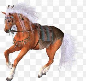 Horse - Horse Racing Foal Clip Art PNG