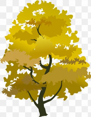 Tree Plan - Tree Yellow Autumn Clip Art PNG