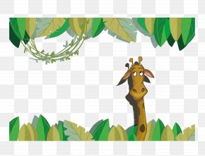 Giraffe Wallpaper Vector - Giraffe Cartoon PNG