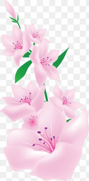 Painting - Painting Pink Flowers Floral Design Clip Art PNG