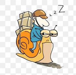 A Snail - Logistics Courier Animation U7269u6d41u516cu53f8 PNG
