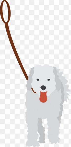 Bone Dog - Dog Puppy Pet Sitting Leash PNG