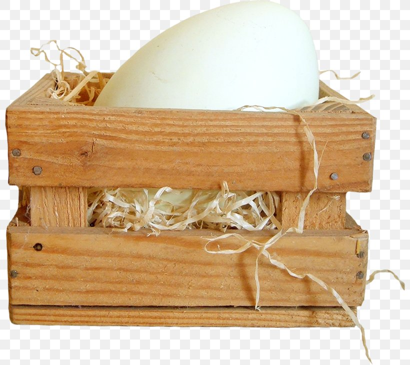 Duck Egg Carton Wood Png 800x731px