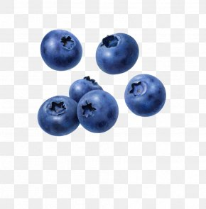 Blueberries - Juice Blueberry Muffin Tart PNG