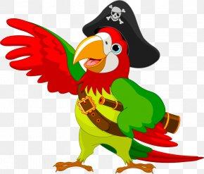 Parrot - Pirate Parrot Clip Art Bird Illustration PNG