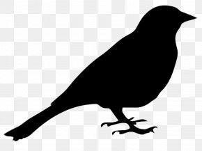 Simple Bird - Bird Silhouette Drawing Clip Art PNG