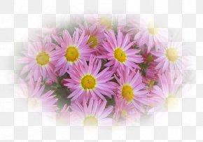 Decorative Floral Pattern Material - Cut Flowers Floral Design Flower Bouquet Artificial Flower PNG
