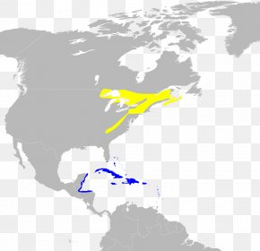 United States - United States Central America Port Of Spain Organization Basque Diaspora PNG