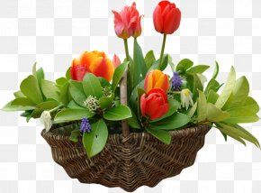 Tulip Flower Baskets - April Flower Photography May PNG