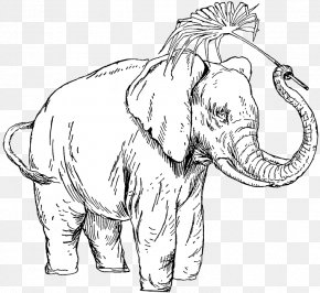 People With Animals - Indian Elephant African Elephant Line Art Drawing PNG