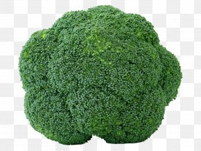 Fresh Fruits And Vegetables,broccoli - Broccoli Cabbage Cauliflower Brussels Sprout Vegetable PNG