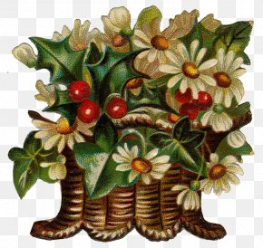 Design - Floral Design Flowerpot Flowering Plant Fruit PNG