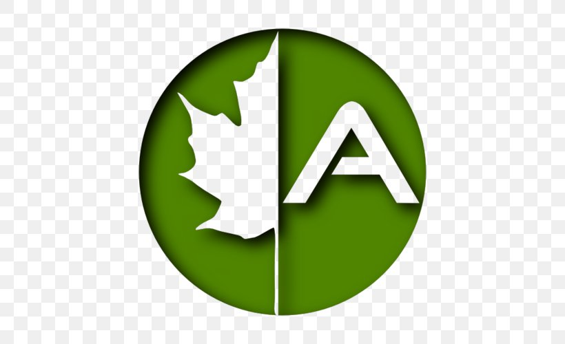 Brand Alburen Consultoria Medioambiental S L Logo Tagline Leaf Png 500x500px Brand Grass Green Leaf Logo Download