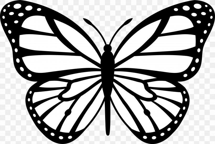 Butterfly Black And White Drawing Clip Art, PNG, 5920x3982px, Papillon Dog, Animal, Area, Art, Arthropod Download Free