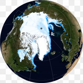 Polar Bear - Arctic Ocean Beaufort Sea Polar Bear Arctic Ice Pack National Snow And Ice Data Center PNG