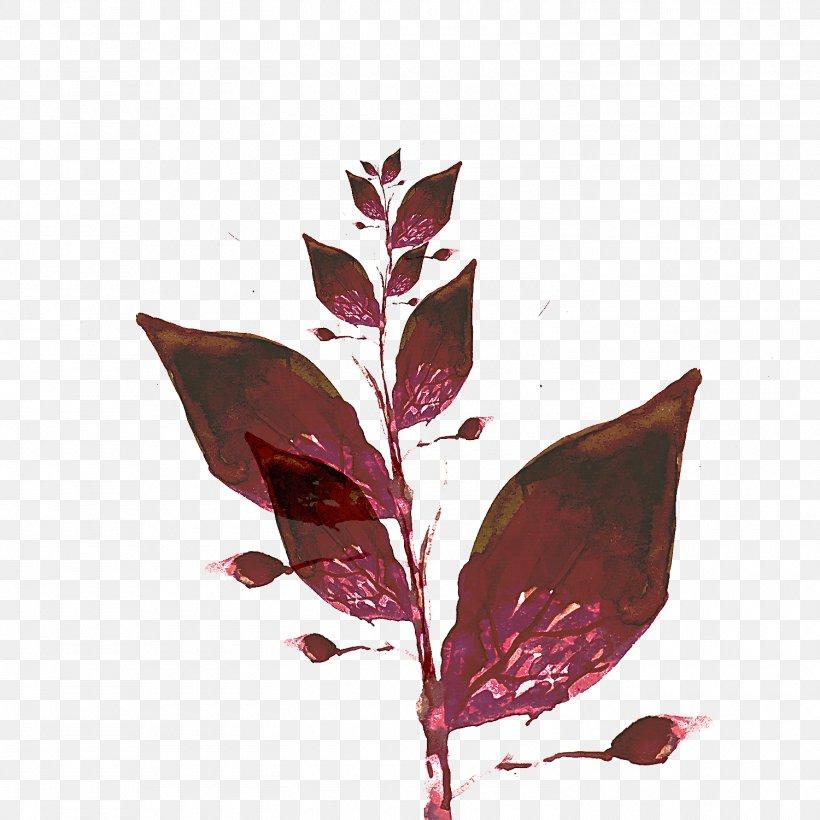 Leaf Flower Plant Branch Flowering Plant, PNG, 1500x1500px, Leaf, Branch, Flower, Flowering Plant, Plant Download Free