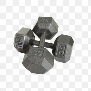 Dumbbells - Dumbbell Barbell Weight Training Exercise Equipment Physical Exercise PNG