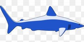 Sea Animals - Download Desktop Wallpaper Clip Art PNG