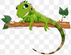 Iguana Transparent Image - Lizard Green Iguana PNG