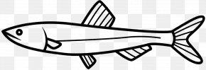 M - Clip Art Line Art Fish Black & White PNG