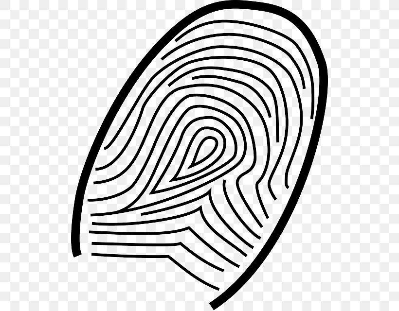 - Fingerprint Coloring Book Clip Art Live Scan, PNG, 528x640px, Fingerprint,  Area, Black And White, Color, Coloring