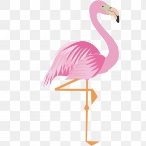 Pink Cartoon Flamingo 17 Material - Greater Flamingo Drawing Cartoon PNG