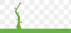 Horizontal Line - Desktop Wallpaper Leaf Tree Plant Stem PNG