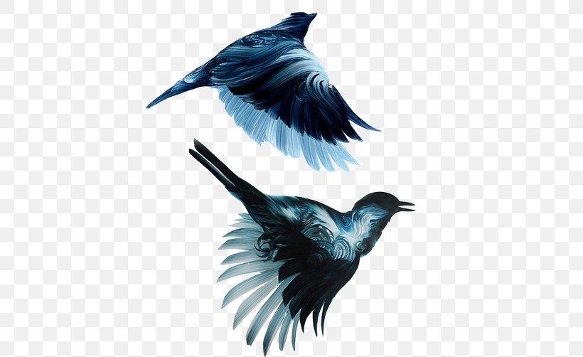 New York City Bird Painting Drawing Illustration, PNG, 502x502px, New York City, Art, Artist, Bachelor Of Fine Arts, Beak Download Free