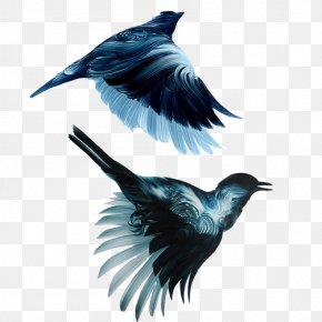 Birds Flying Material Picture - New York City Bird Painting Drawing Illustration PNG