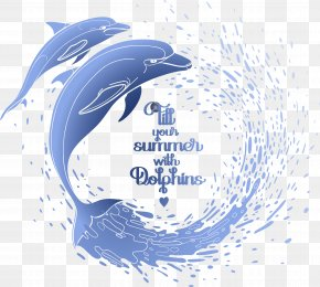 Dolphin Paddle - Dolphin Euclidean Vector Illustration PNG