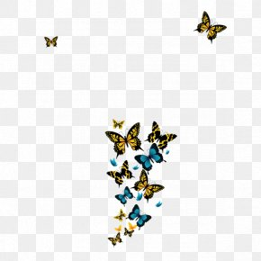 Butterfly Fantasy - Butterfly Free Content Clip Art PNG