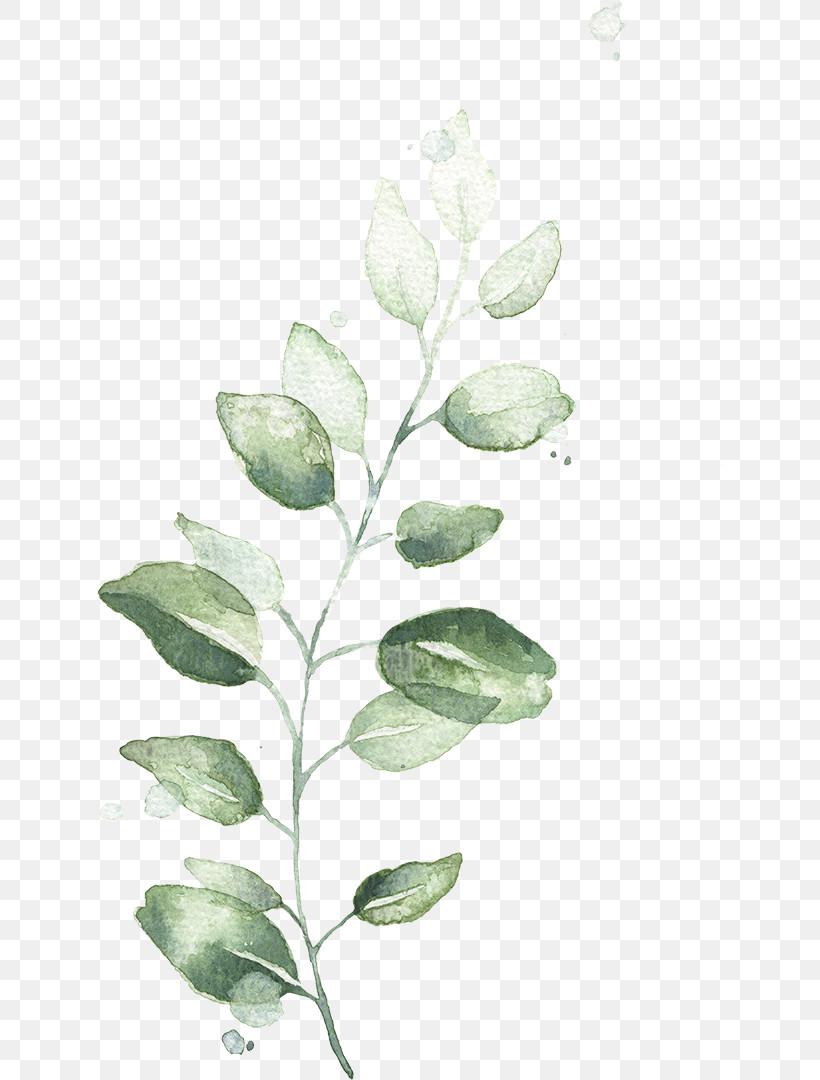 Flower Leaf Plant Tree Branch, PNG, 626x1080px, Flower, Branch, Leaf, Plant, Plant Stem Download Free