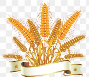 Wheat - Bread Wheat Royalty-free Clip Art PNG