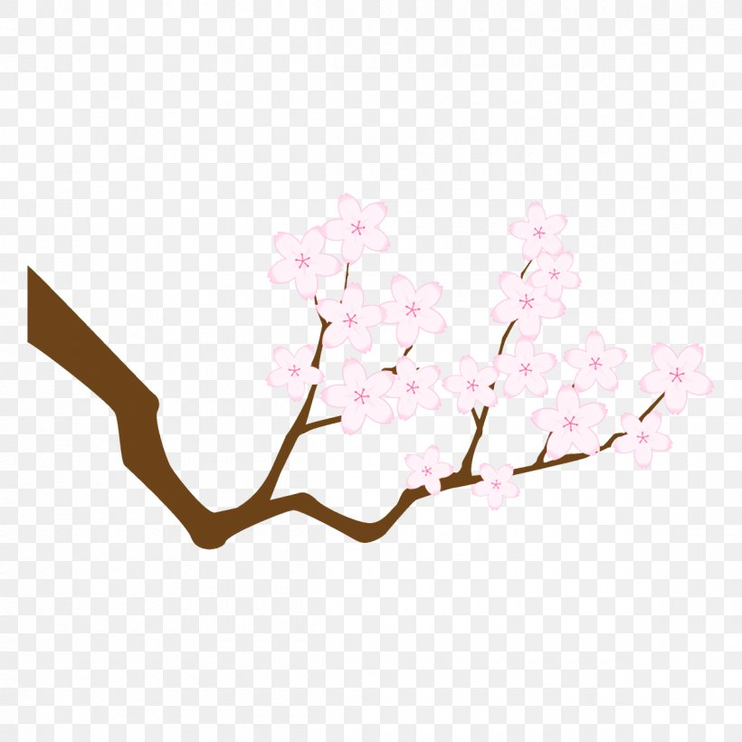 Cherry Blossom, PNG, 1200x1200px, Branch, Blossom, Cherry Blossom, Flower, Pink Download Free