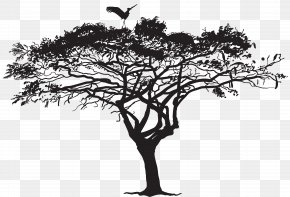 Exotic Tree And Bird Silhouette Clip Art Image - Bird Tree Silhouette Flock PNG