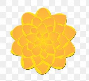 Marigold Cliparts - Mexican Marigold Calendula Officinalis Flower Free Content Clip Art PNG
