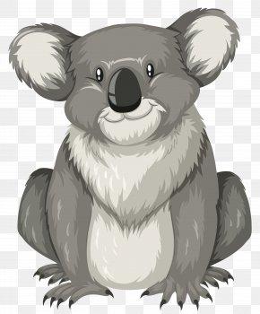 Cartoon Koala - Letter K Illustration PNG