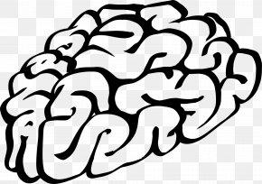 Brain Damage Cliparts - Brain Cartoon Clip Art PNG