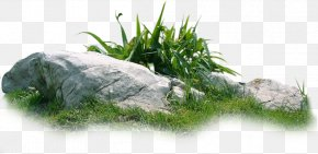 Rock Grass Material - Download Landscape PNG