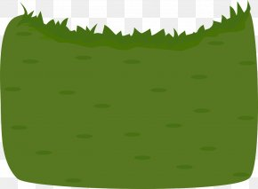 Field - Meadow Grass Lawn Artificial Turf Sprachraupe PNG