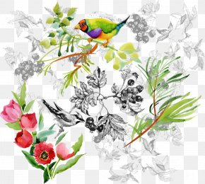 Vector Cartoon Bird - Floral Design Watercolor Painting Drawing Illustration PNG