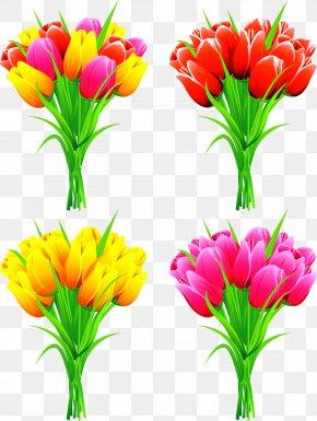 Tulip - Flower Bouquet Euclidean Vector Floral Design PNG