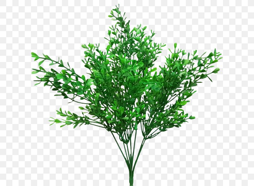 Leaf Shrub Branch Artificial Flower Plant Stem, PNG, 800x600px, Leaf, Artificial Flower, Branch, Flower, Garden Furniture Download Free