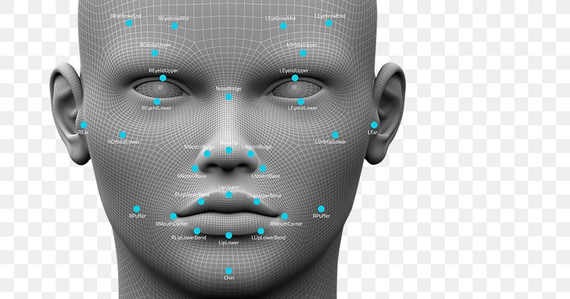Nose Chin Technology, PNG, 680x430px, Nose, Chin, Face, Forehead, Head Download Free