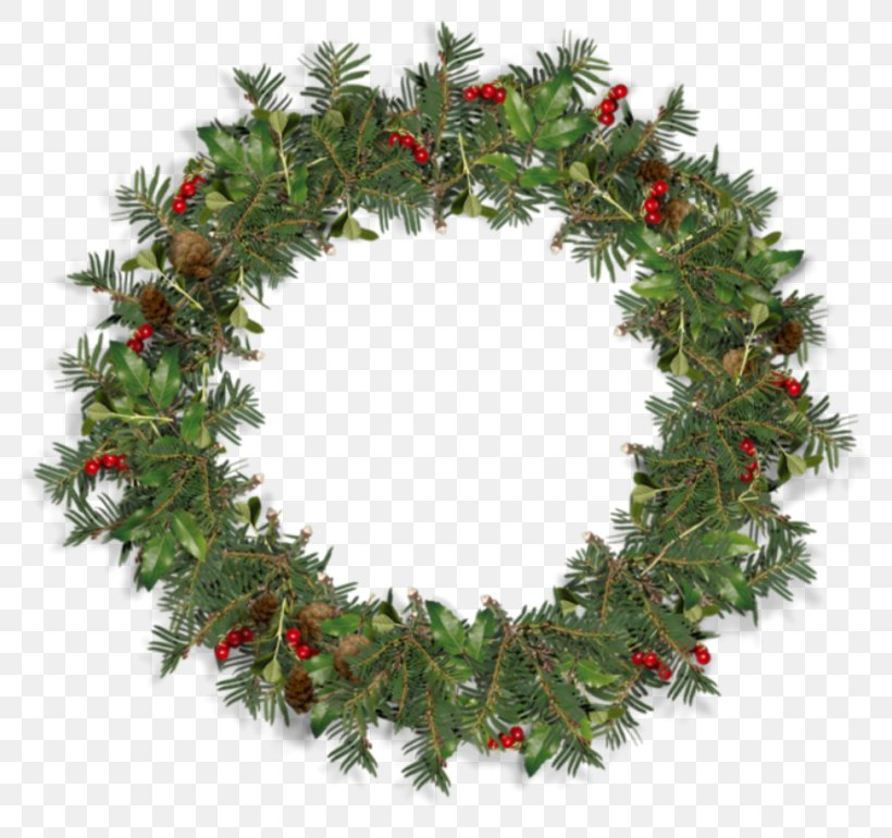 Wreath Mississippi Mud Pie Box Christmas Decoration Png 800x770px Wreath Berry Box Branch Christmas Download Free