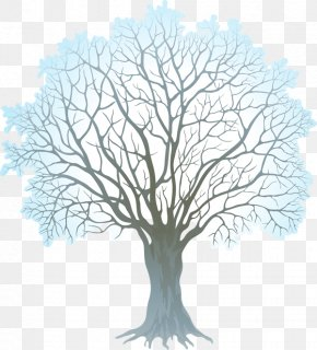 Winter Branch Cliparts - Tree Winter Branch Clip Art PNG