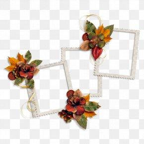 Frame Lace Flowers - Flower Euclidean Vector PNG